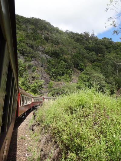 ケアンズからキュランダ列車とスカイレールでレインフォレスト満喫
