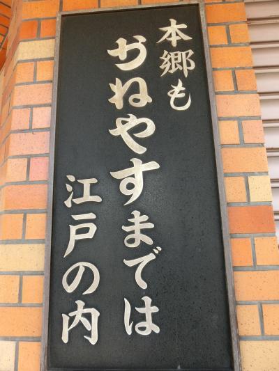 東京文学・歴史散歩4。本郷から湯島その1:本郷、菊坂、本妙寺坂界隈。