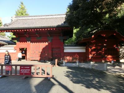 東京文学・歴史散歩5。本郷から湯島その2:樋口一葉終焉の地から東大構内、湯島天神にかけて。