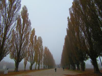 秋深まるメルヘンの国ドイツ一人旅。ダッハウ強制収容とミュンヘン街歩き編