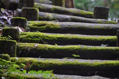 岩本山公園 2016.10.30