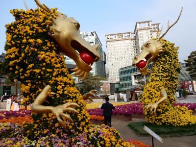 秋のソウル・曹渓寺