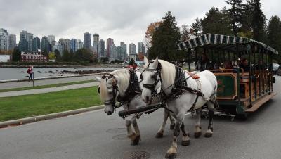 エアカナダで行く秋のバンクーバー & ビクトリア & シアトル  7日間  ( バンクーバー編 )