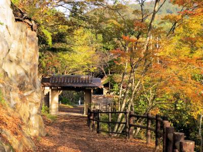 奥信濃松川渓谷の紅葉・・松川渓谷の舞の道と山田温泉をめぐります。