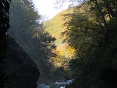 奥信濃松川渓谷の紅葉・・松川渓谷の八滝、雷滝と山田牧場、地獄谷野猿公苑をめぐります。
