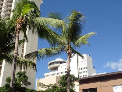 3回目のハワイ旅行(最終日帰国)