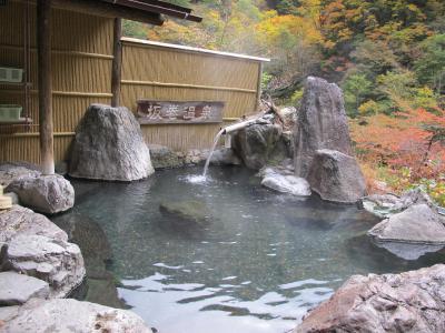 車中泊:信州温泉めぐり (7)安曇野~松本城~坂巻温泉