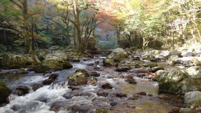 内子町小田深山渓谷 深山荘に泊まって朝夕の紅葉を楽しみました。
