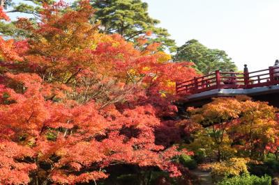 弥彦公園、もみじ谷の紅葉・・・