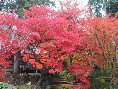 三つの寺の紅葉の