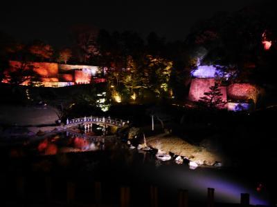 初めての金沢 其の二 ライトアップ鑑賞と東茶屋街