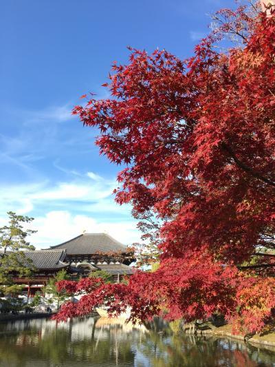 大人の遠足in奈良