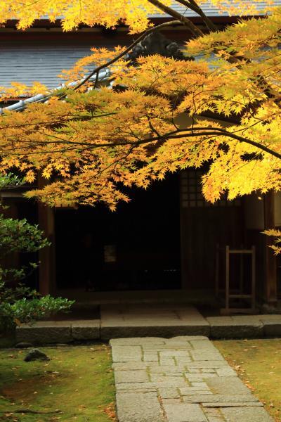 新潟 紅葉めぐり~清水園、市島邸