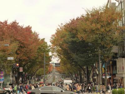東京散歩♪ vol.34 霜月つれづれ~♪