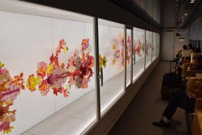 現代アートの走る美術館「現美新幹線」(長岡)