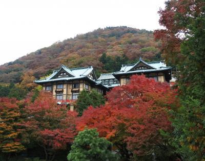花御殿の紅葉はまだまだ見頃(11月17日)