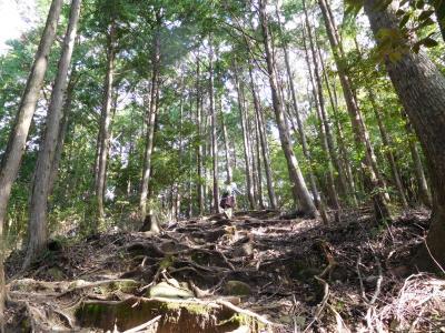 龍神で迷い、熊野古道でばてる。