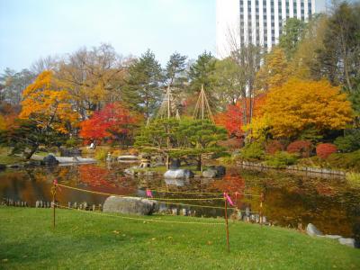 初冬の中島公園