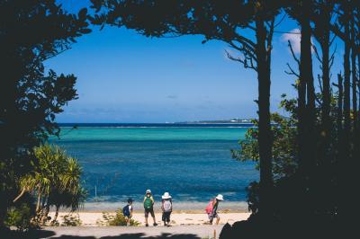 フクギ並木の隠れ家に泊まる沖縄本島 その1