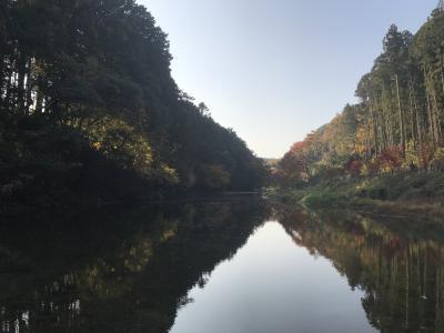 秋の一日 近郊の嵐山渓谷辺りを散策する。