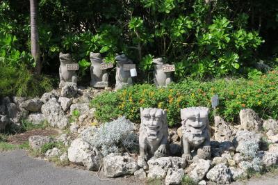 あったかい小浜島でのんびりゆっくり♪初の沖縄へ