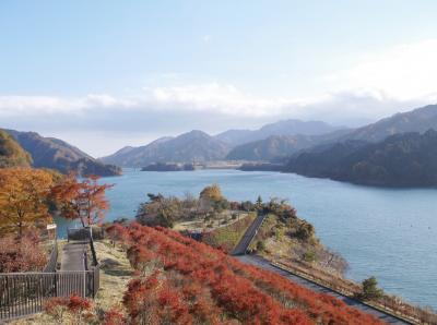 紅葉を見にふれあい館(神奈川県)へ行ってきました・・・