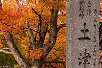 見ごろから晩秋までの土津神社の紅葉