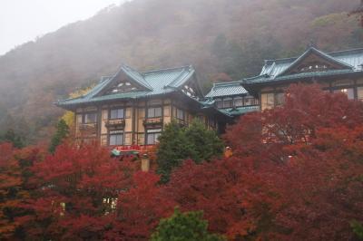 富士屋ホテルの紅葉もそろそろフィナーレ(11月21日)