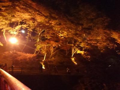 2016年 ライトアップ中の香嵐渓