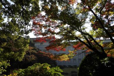 2016年秋の庭園開放-外来種に唖然