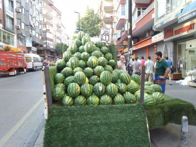 イスタンブールとちょこっとブルサ2014