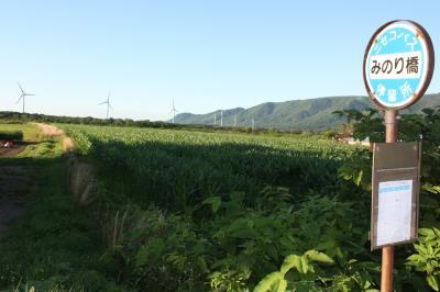 北海道旅行記2016年夏(18)神威岬~岩内~黒松内バス乗車編