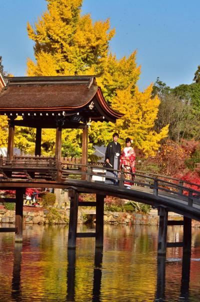 2016紅葉(3) 多治見・虎渓山永保寺の秋彩紅葉