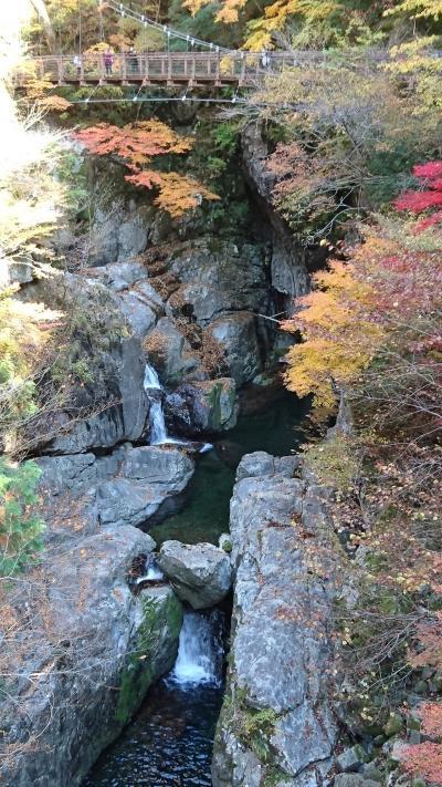 奈良・みたらい渓谷と紅葉 2016.11