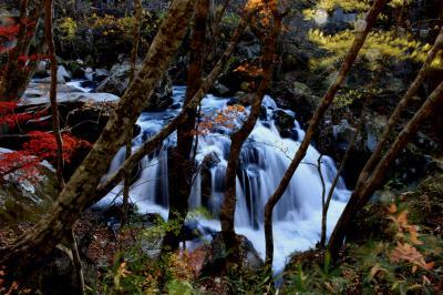 ◆晩秋の山鶏滝の名残り紅葉