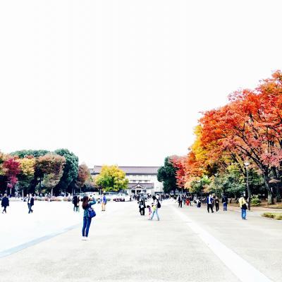 クラーナハ展、上野公園の紅葉