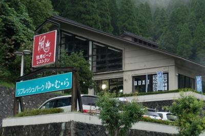 日帰りバス旅行、湯村温泉