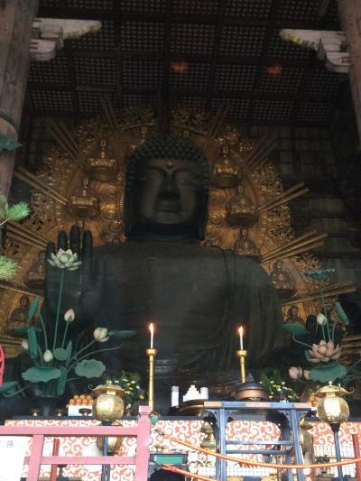 マイルで行った 奈良4日間~3日目