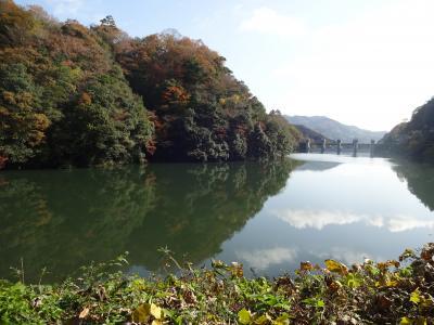 徳山駅からの旅 ~北へ北へ 秋の向道ダムと益田のイカ丼