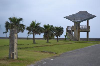 レンタバイクで小浜島を散策