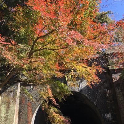 2016年秋「第18回 愛岐トンネル群 秋の特別公開」ライド!