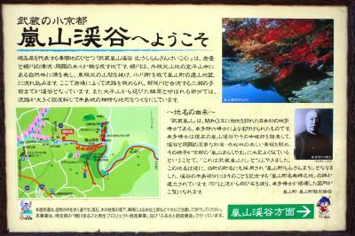 嵐山へ紅葉を愛でに。(あらしやまにあらず。w)