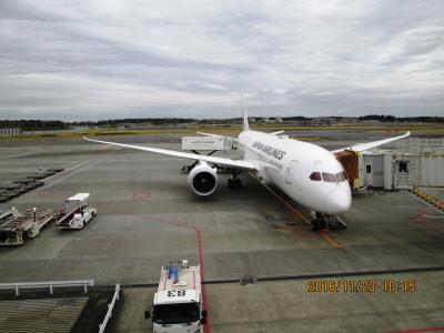 約1年9カ月ぶりの JAL ビジネスクラスで 行く BUSAN 一泊二日 の 旅 1