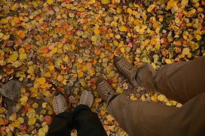 紅葉真っ只中のカズベキ村へ