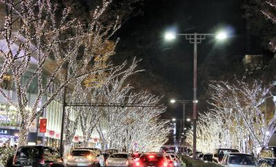 2016 冬 表参道イルミネーション~♪