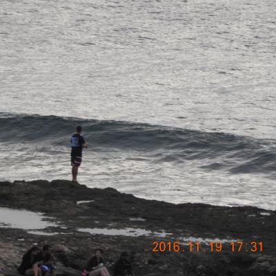 陰陽道 ハワイ・オアフ島コオリナ 動画有り Marriott's Ko Olina Beach Club in Oahu オアフ島コオラニ マリオット 2016 11 19~20   ニコン60倍 No.3