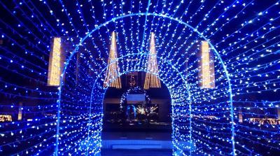 2016エクシブ京都八瀬離宮10周年記念「クリスマスイルミネーション」