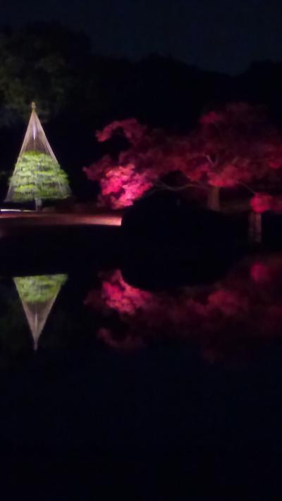 紅葉に誘われて六義園夜間開園へ