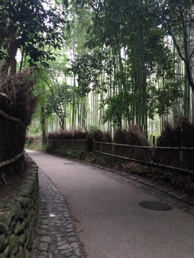 母と娘の日帰り旅行 今回は京都②
