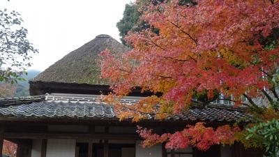 佐賀・福岡の紅葉の名所へ(06) 地蔵院参拝と伊東玄白旧邸の見学。